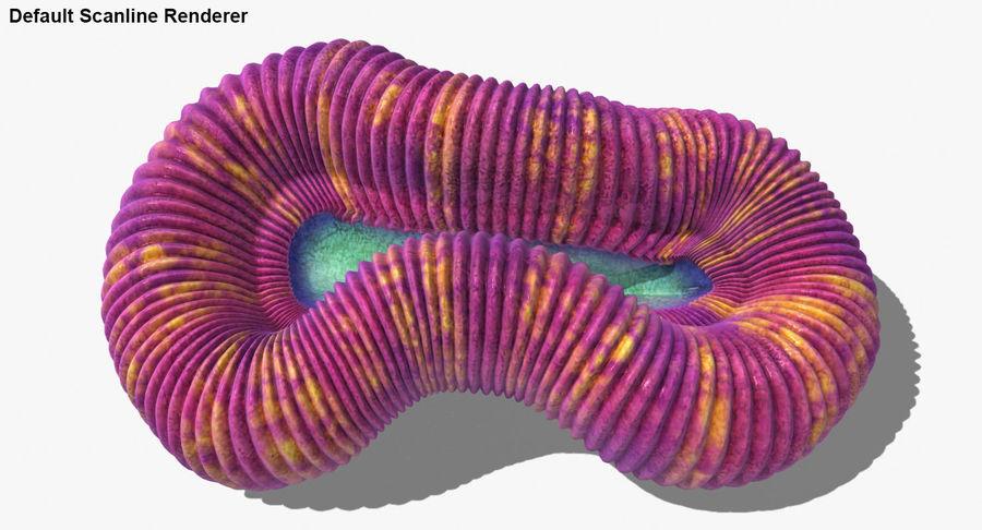 Collection de corail royalty-free 3d model - Preview no. 25