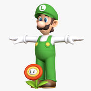 Luigi Fire Flower Super Mario Bros Postać 3d model