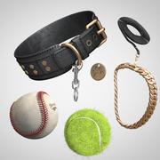 Dog accessories Pack V1 3d model