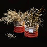 Fältväxter uppsättning 3d model