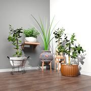 带植物的凳子和盆 3d model