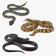 Rigged Snakes 3D模型收藏 3d model