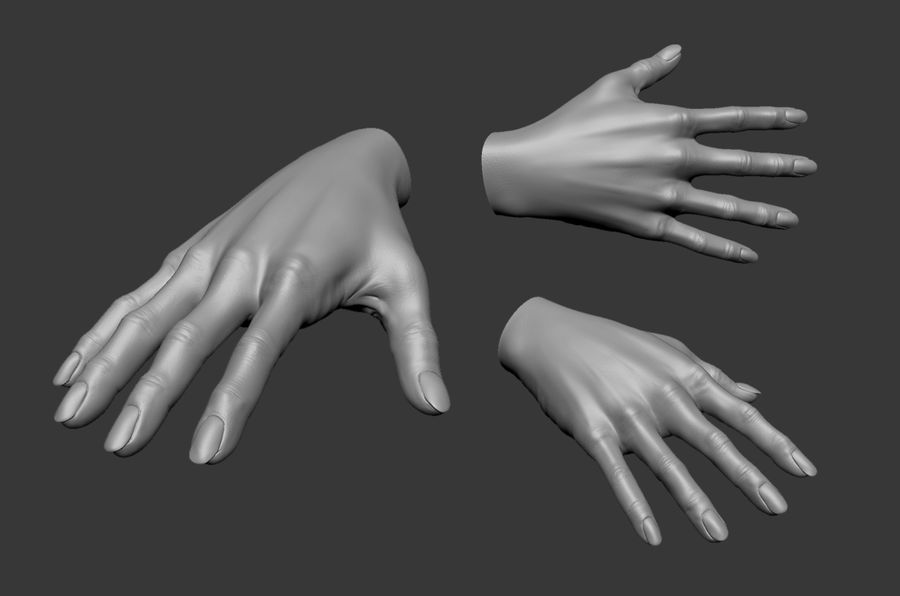 Female Hand 3D model royalty-free 3d model - Preview no. 1