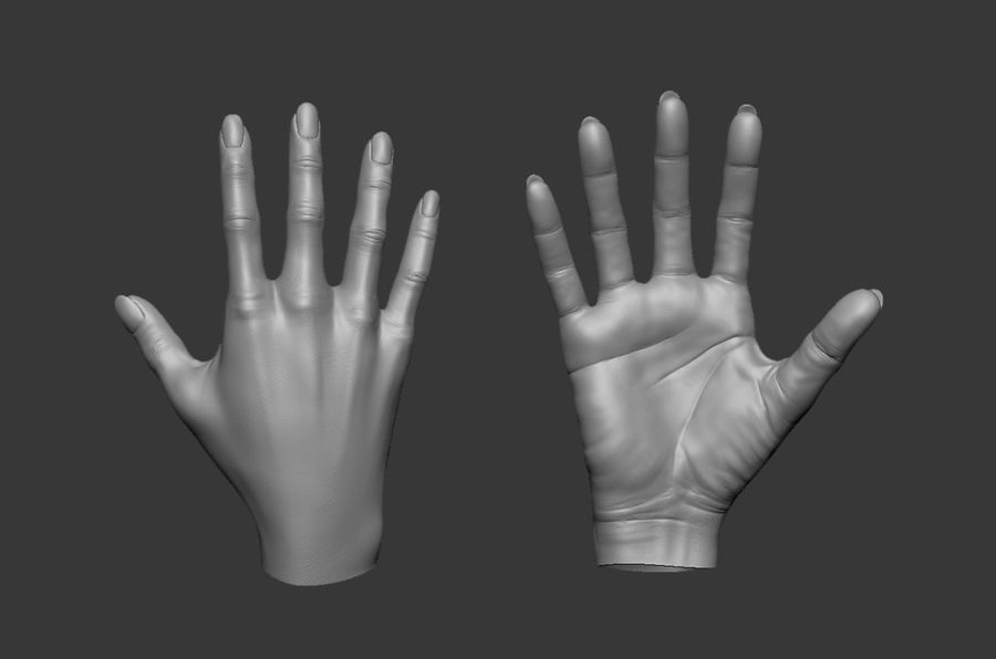 Female Hand 3D model royalty-free 3d model - Preview no. 2