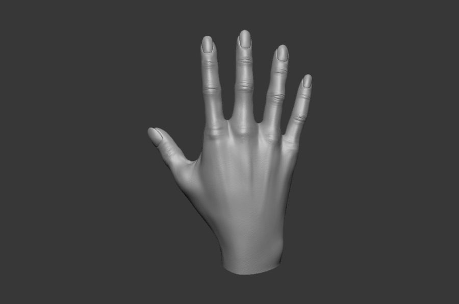Female Hand 3D model royalty-free 3d model - Preview no. 4
