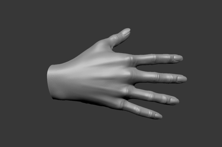 Female Hand 3D model royalty-free 3d model - Preview no. 8