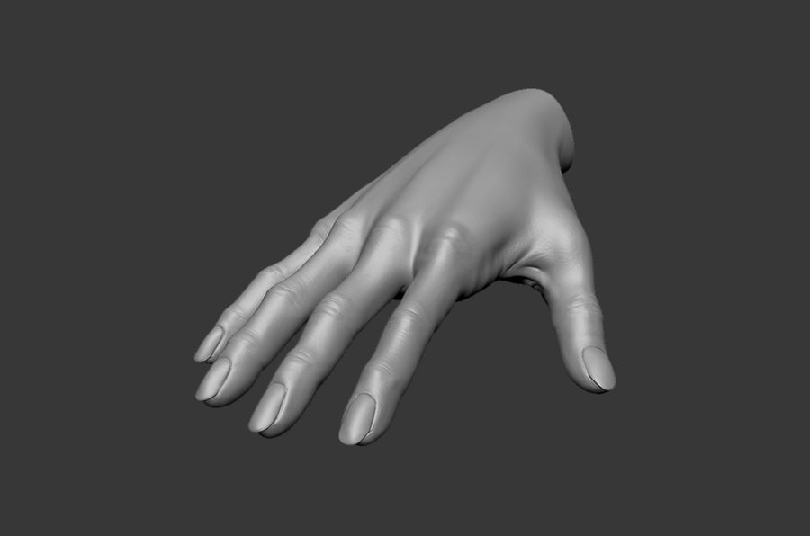 Female Hand 3D model royalty-free 3d model - Preview no. 6
