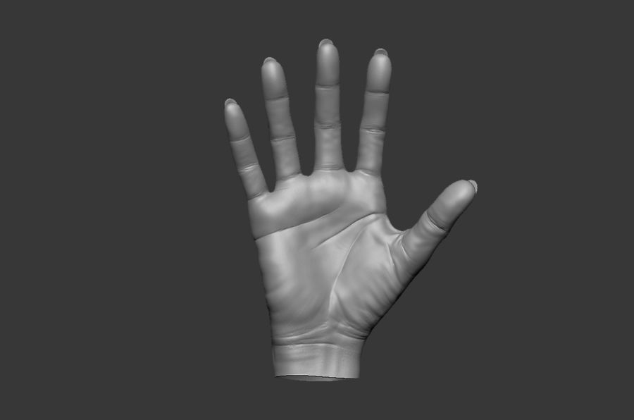 Female Hand 3D model royalty-free 3d model - Preview no. 5
