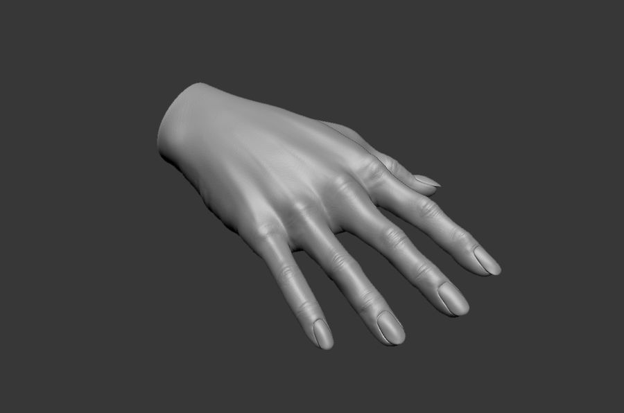 Female Hand 3D model royalty-free 3d model - Preview no. 7