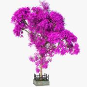 Długie drzewo bzu 3d model