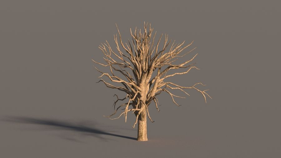 现实的枫树 royalty-free 3d model - Preview no. 14
