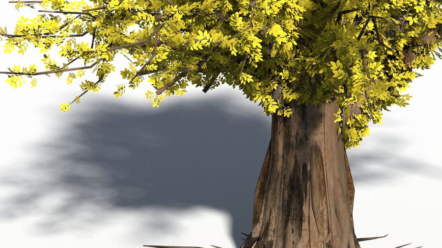 Árbol realista royalty-free modelo 3d - Preview no. 2