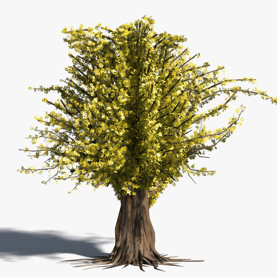 Árbol realista royalty-free modelo 3d - Preview no. 1