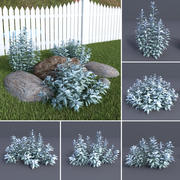 Gümüş pelin Artemisia ludovicana 3d model