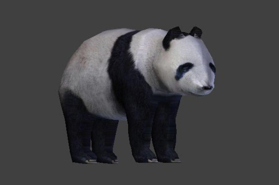 Urso panda royalty-free 3d model - Preview no. 9