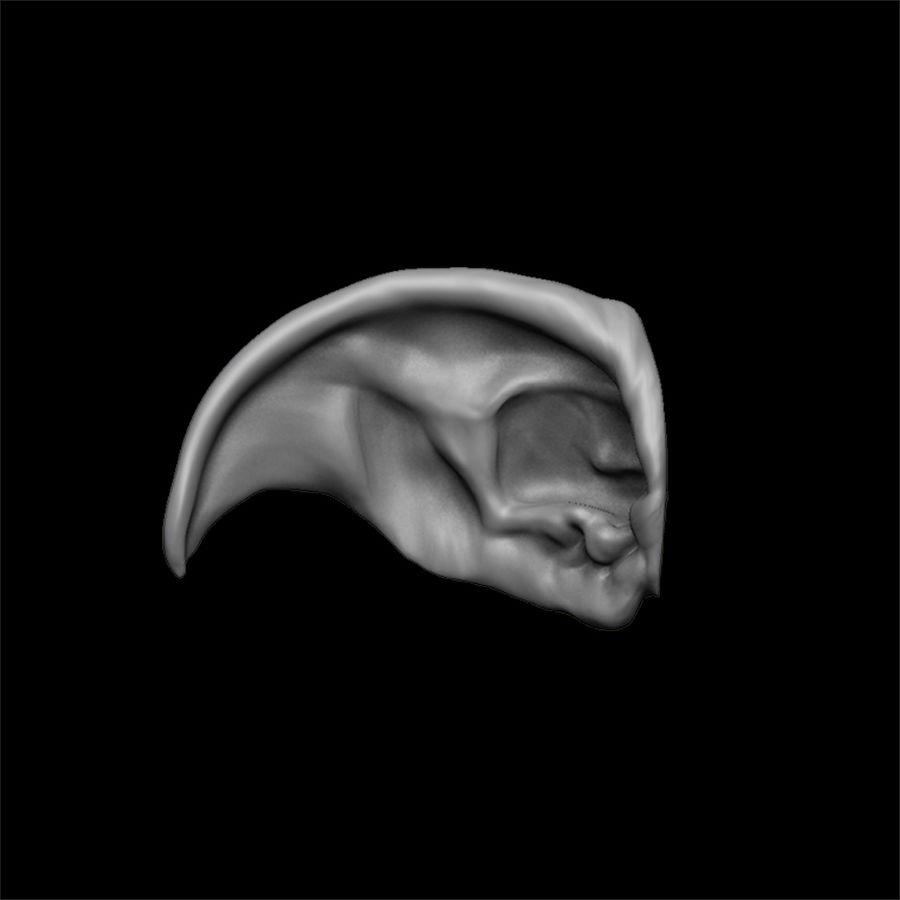 modèle 3D oreilles avec high poly et low poly royalty-free 3d model - Preview no. 11