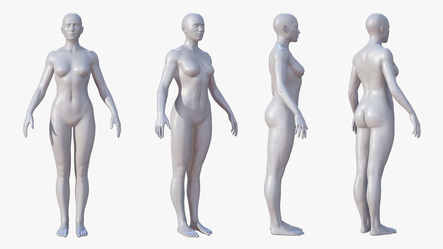 Character - Female Anatomy Body Base HighPoly royalty-free 3d model - Preview no. 9