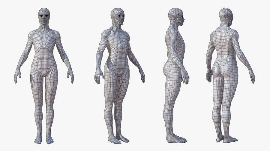 Character - Female Anatomy Body Base HighPoly royalty-free 3d model - Preview no. 7
