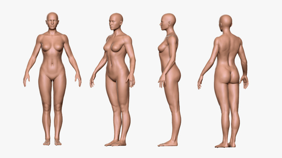 Character - Female Anatomy Body Base HighPoly royalty-free 3d model - Preview no. 11