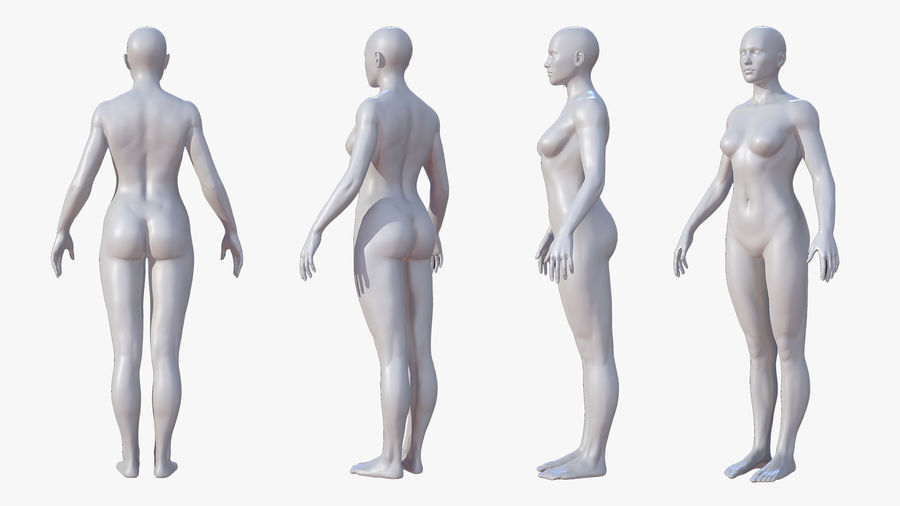 Character - Female Anatomy Body Base HighPoly royalty-free 3d model - Preview no. 10
