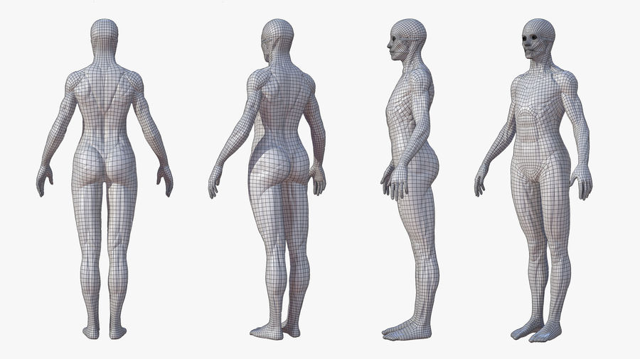 Character - Female Anatomy Body Base HighPoly royalty-free 3d model - Preview no. 8