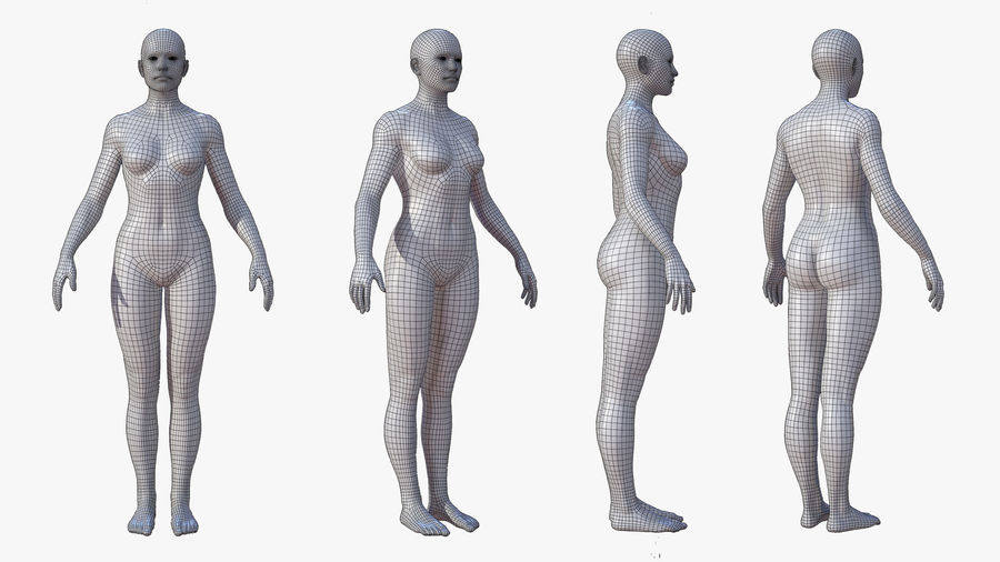 Character - Female Anatomy Body Base HighPoly royalty-free 3d model - Preview no. 13