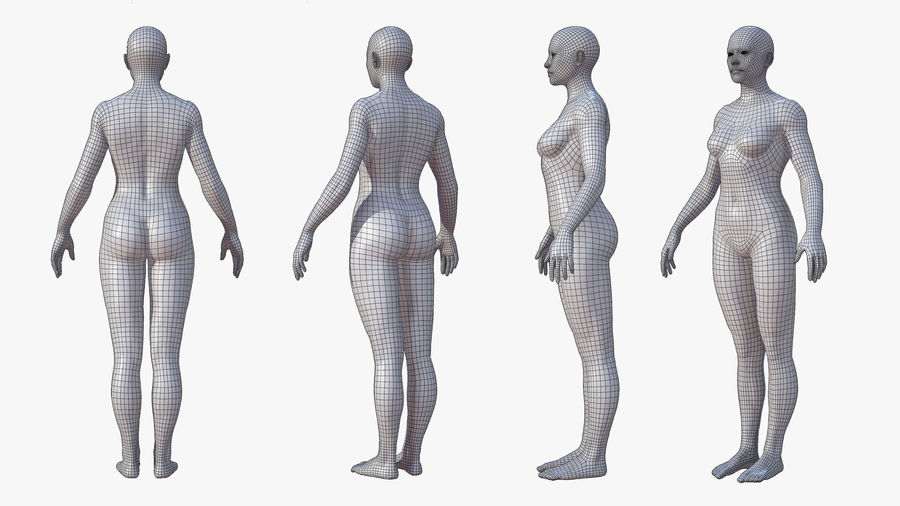Character - Female Anatomy Body Base HighPoly royalty-free 3d model - Preview no. 14