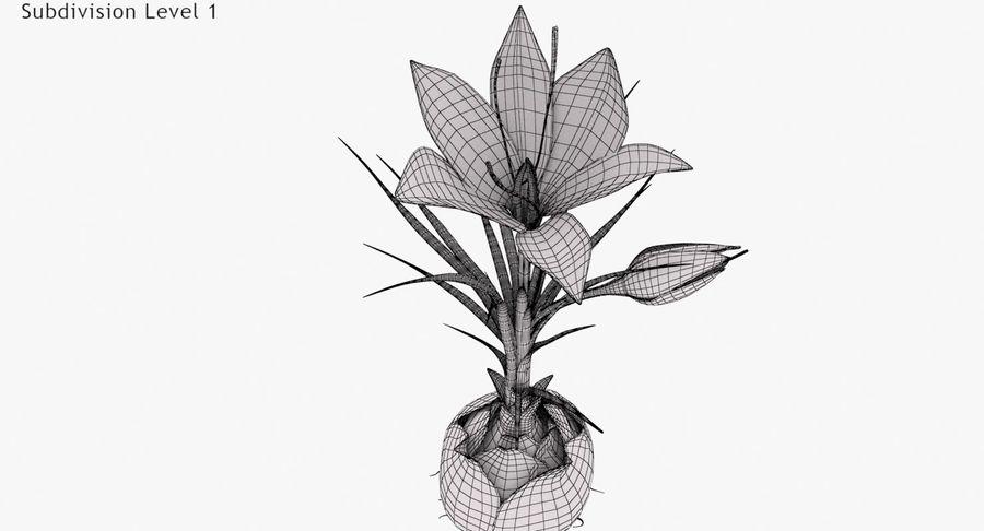 Plant Part Details royalty-free 3d model - Preview no. 13