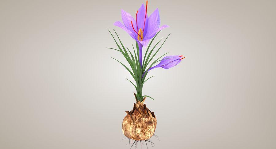Plant Part Details royalty-free 3d model - Preview no. 2