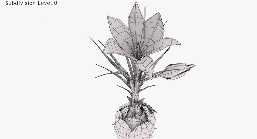 Plant Part Details royalty-free 3d model - Preview no. 12