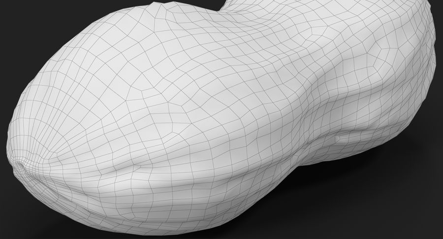 Peanut 1 royalty-free 3d model - Preview no. 28