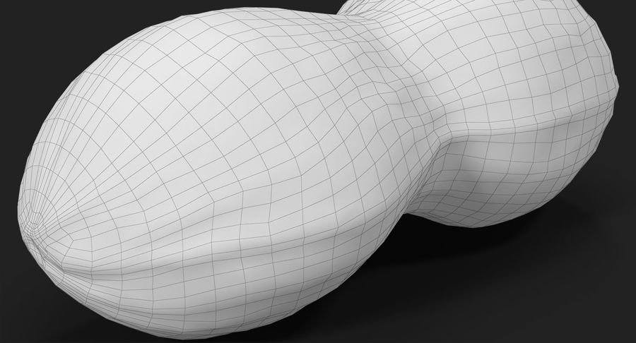 Peanut 2 royalty-free 3d model - Preview no. 28