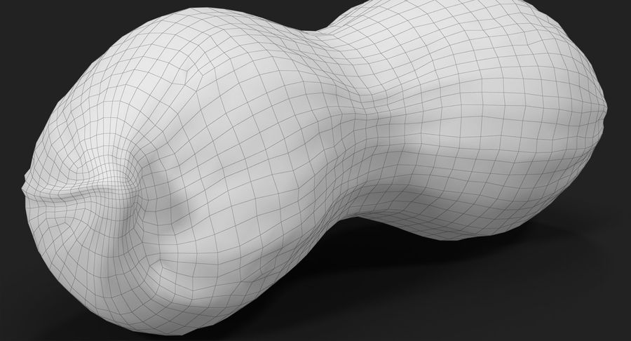 Peanut 2 royalty-free 3d model - Preview no. 26