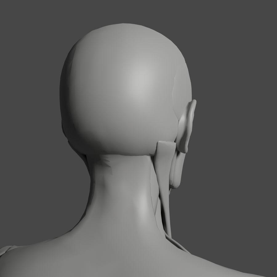 解剖学3 d moedl royalty-free 3d model - Preview no. 10