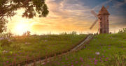 Solnedgång WindMill miljö 3d model