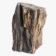 Corteccia d'albero scansionata 1 3d model
