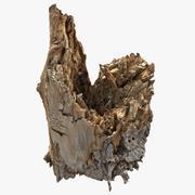 Tree Bark Scanned 3 3d model