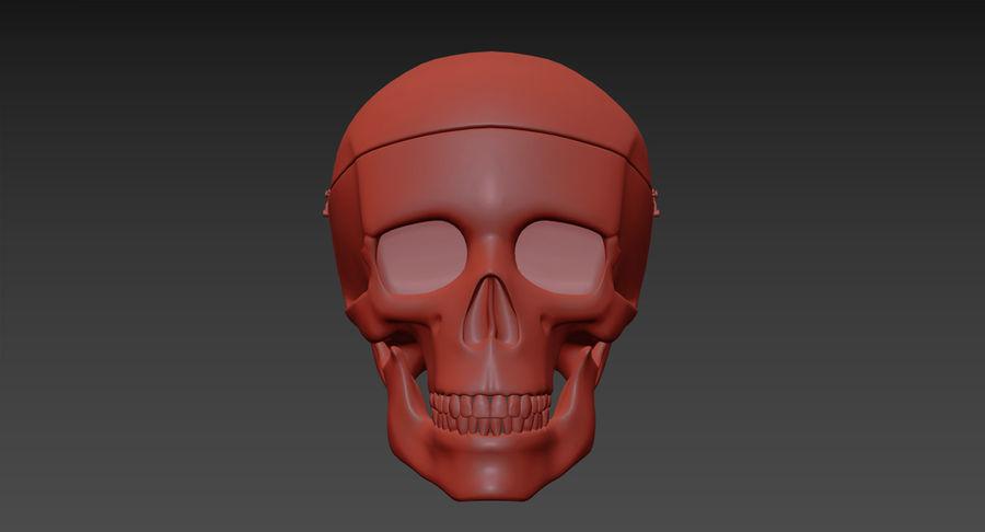 Modèle anatomique de crâne royalty-free 3d model - Preview no. 20
