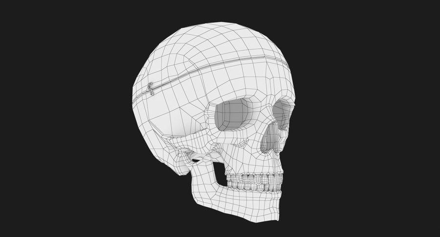 Modèle anatomique de crâne royalty-free 3d model - Preview no. 12