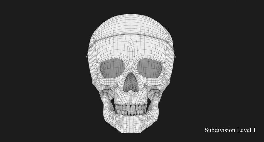 Modèle anatomique de crâne royalty-free 3d model - Preview no. 11