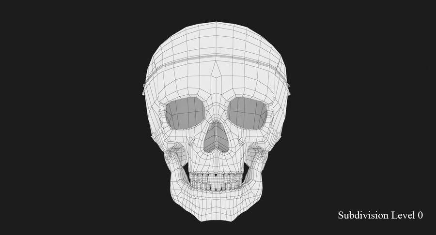 Modèle anatomique de crâne royalty-free 3d model - Preview no. 10