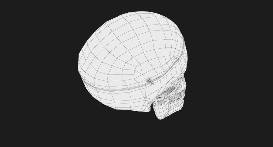 Modèle anatomique de crâne royalty-free 3d model - Preview no. 18