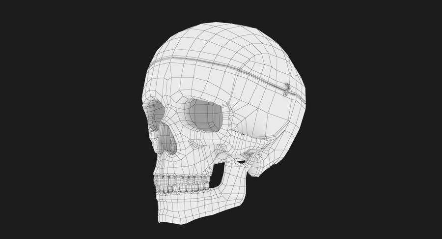 Modèle anatomique de crâne royalty-free 3d model - Preview no. 16