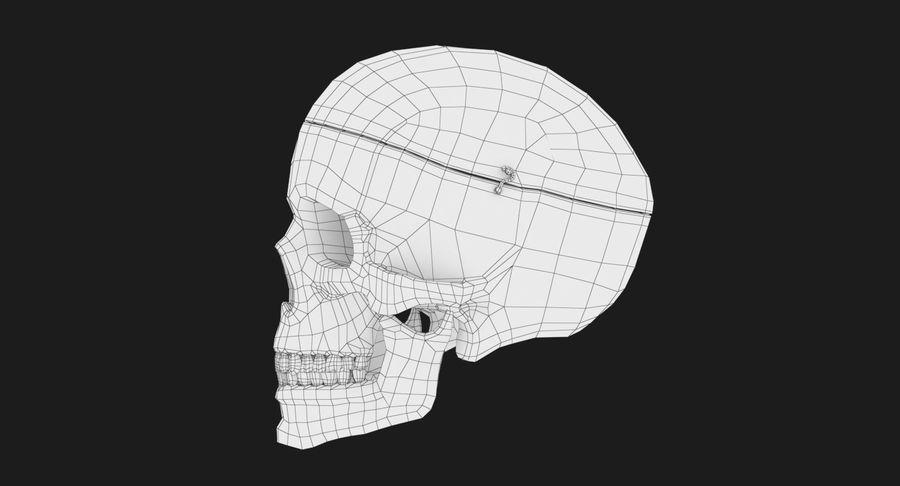 Modèle anatomique de crâne royalty-free 3d model - Preview no. 15