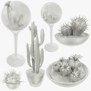 Cactus en la colección de macetas transparentes modelo 3d