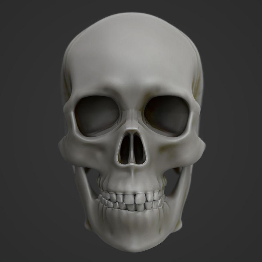 Anatomie musculaire de la tête complète royalty-free 3d model - Preview no. 5
