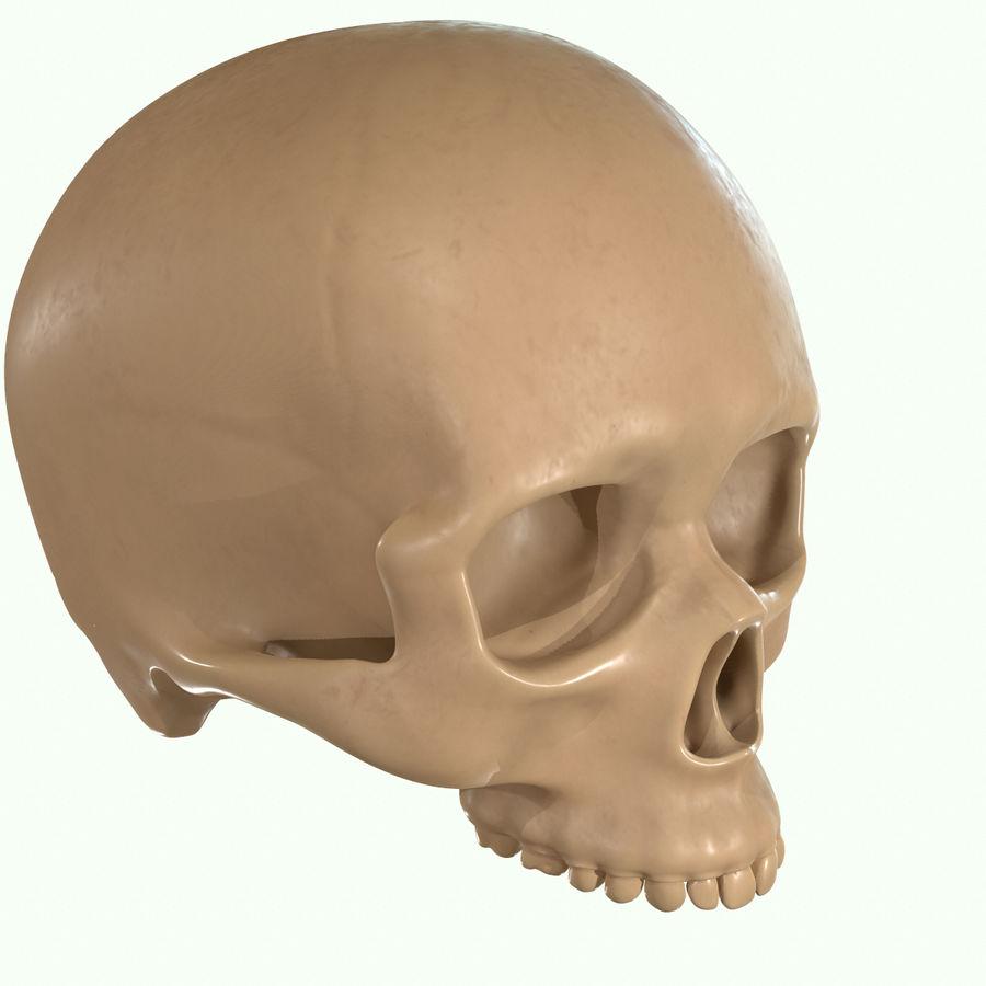 Anatomie musculaire de la tête complète royalty-free 3d model - Preview no. 57