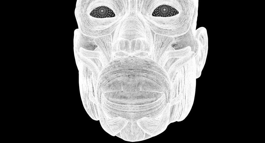 Anatomie musculaire de la tête complète royalty-free 3d model - Preview no. 69