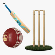 Cricket Collection 3d model