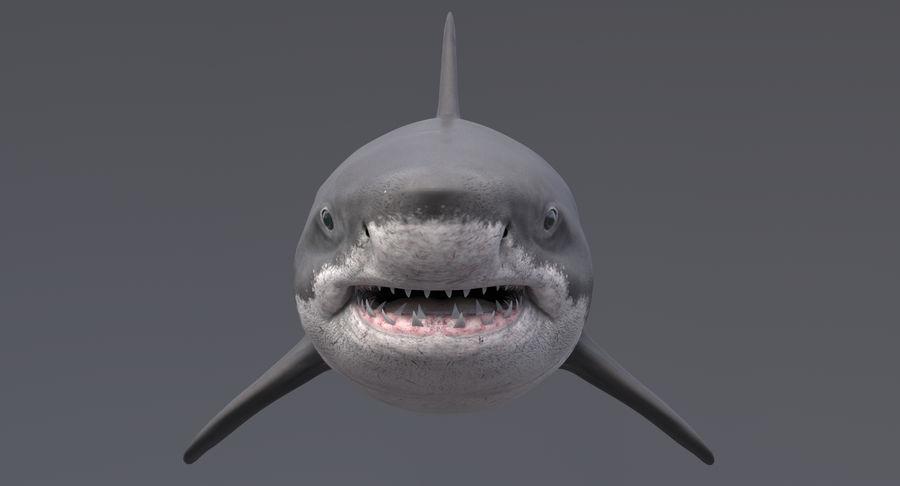 Grande squalo bianco royalty-free 3d model - Preview no. 6